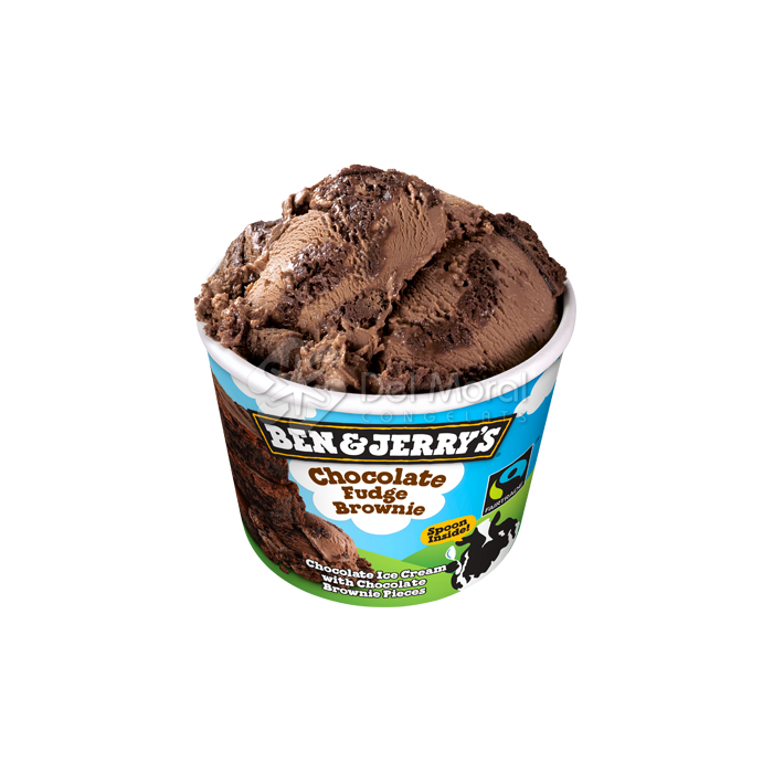 CHOCOLATE FUDGE BROWNIE - BEN&JERRY'S